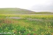 Гора Опук