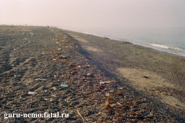 Мусор на пляже, между Саки и Евпаторией