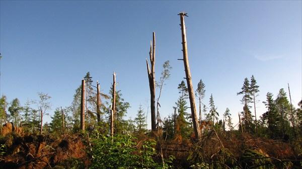 После урагана 2010