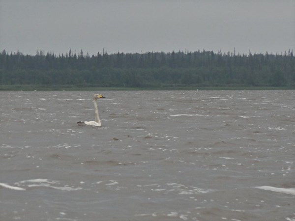 Озеро Урдюжское