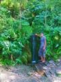 Дызвездный ключ в долине реки Тугояковки