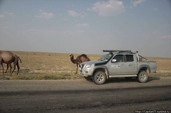 Korabli-pustyni