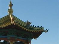 «Золотая обитель Будды Шакьямуни». Элиста. Калмыкия.