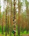 Керженец-2009. Дерево памятных табличек