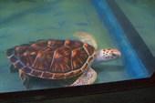 Это черепаха.