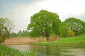 Река Сев.
