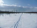 И снова лыжня зовет вперед!