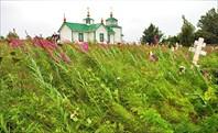 Русская православная церковь в Ninilchik village