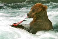Медведь-подводник