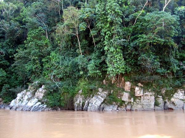 Р.Амазонка