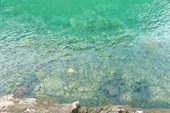 Вода в реках!