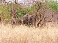 «Путешествие в Страну честных людей» Буркина-Фасо 2004 . (c) Але