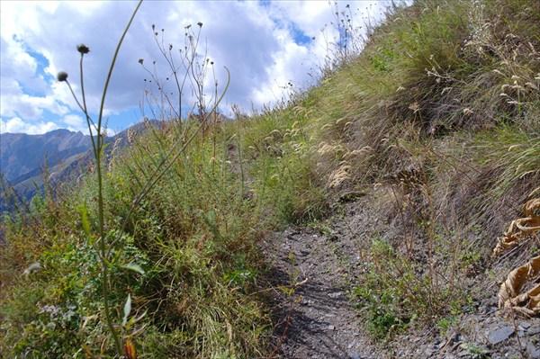 Тропа на пер. Ацунта