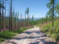 Дорога к Чулышману