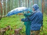 Готовим под дождем...