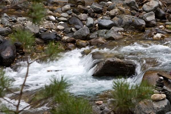 Аршан. Река Кынгарга