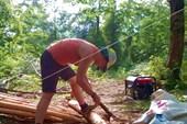 00025W4GXyo-y76o Продолжение лесозаготовок