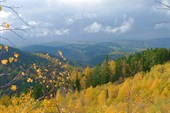 Осенняя красота
