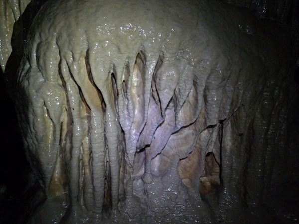 Медуза?
