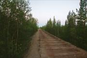 По восточному берегу Умбозера