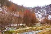 Дорога Черга - Алтайское