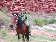 В год лошади на коне