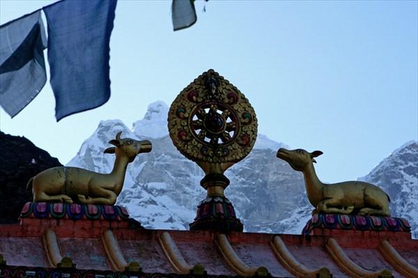 Колесо дхармы и олени на воротах