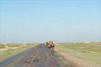 2. Западный Казахстан..