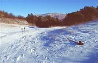 Партизанскими лесами Крыма. Зимой