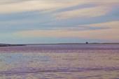 Устье Пёши. (Чёшская губа Баренцева моря)