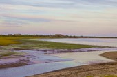 Поселок Белушье, вид со стороны устья