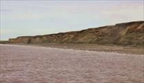 Пес радостно провожает нас вдоль берега.