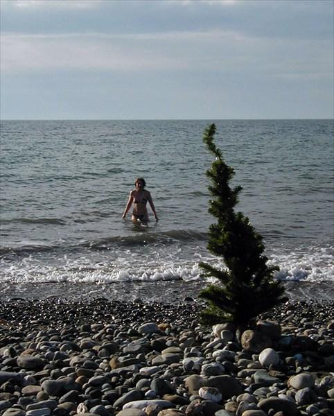 Солнце, море, январь