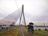 Вид на старый город с Вантового моста