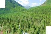 Фото 9. Вид в долину р.Калагаш с Кучерлинской тропы.