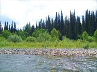 Сплав по реке Уса