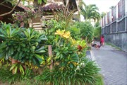 Bali_018