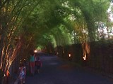 Bali_141