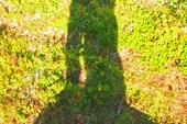 Наши тени на этом вереске...