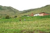Сельское хозяйство на склонах.