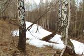 Последние снега