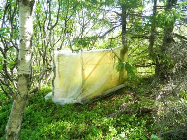 Помывочная кабинка в кустиках