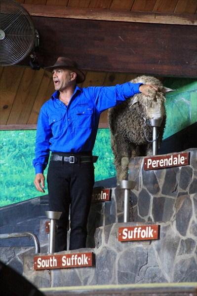 Farm Show - действительно шоу