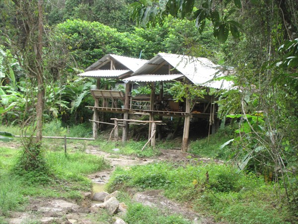 провинция Phang-nga. Слонопотамовая стоянка