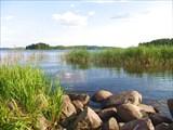 Ладожское озеро в Терву