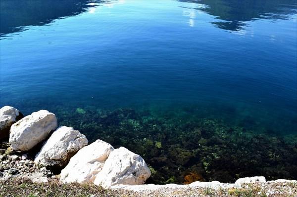 Говорят, что в Боке Которской не совсем чистая вода ...