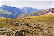 Горы близ перевала Карагем