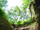 Киселевская пещера. Вид из входа наружу.