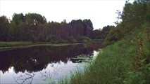 Речка Уница. Вид с моста