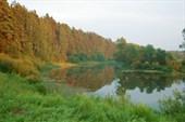 Река Протва здесь завораживает.